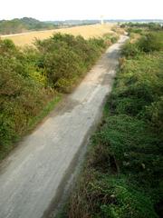 利根川河川敷(2)