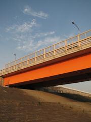 新大利根大橋(1)