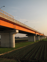 新大利根大橋(2)