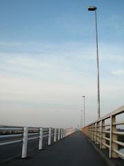 新大利根大橋(3)
