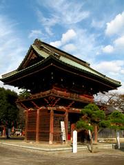 桜門(1)