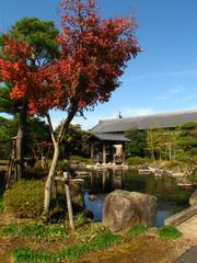 日本庭園(2)