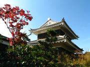 日本庭園(3)