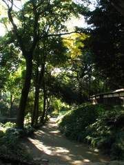 坂野家住宅 堀(2)