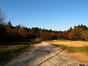 牛久自然観察の森 入り口(2)
