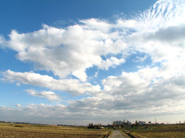 牛久沼に行く途中の空
