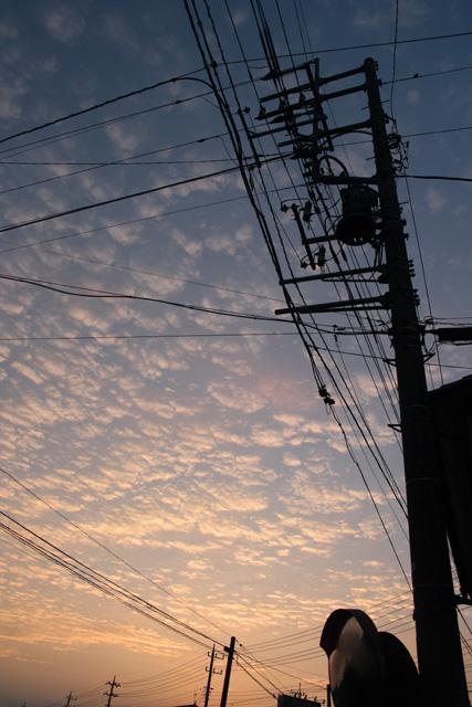 朝日のいわし雲