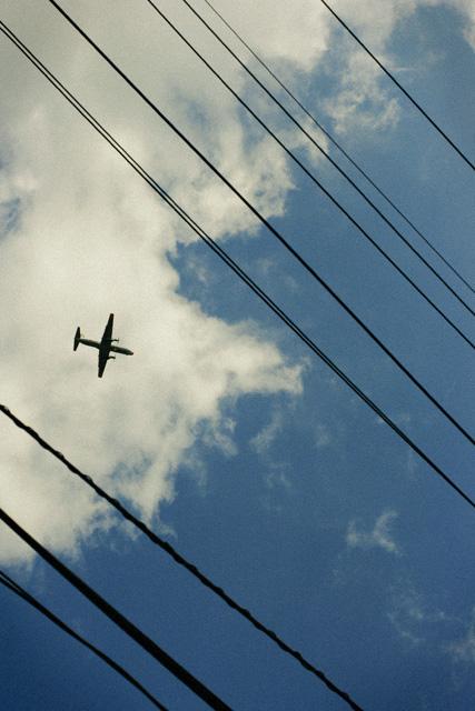 飛行機が見えた!