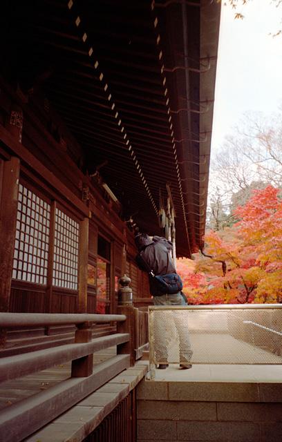 本土寺本堂(2)
