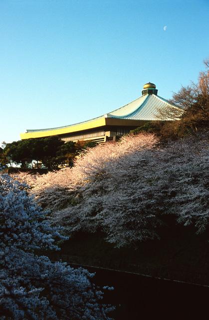 桜の咲く頃に(5)