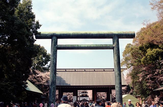 桜 @ 靖国神社(2)