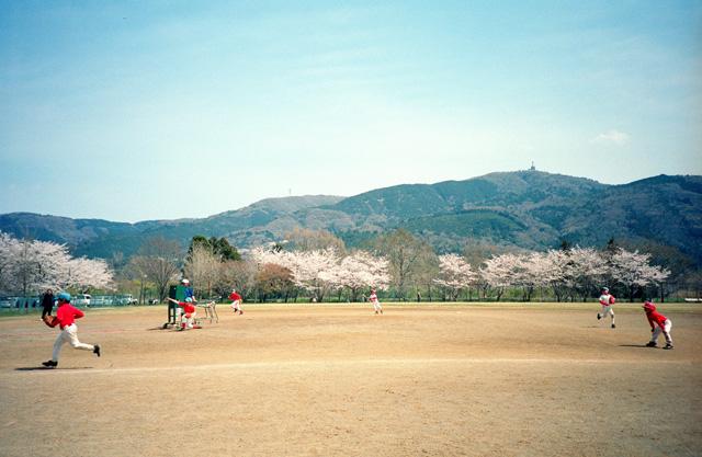 桜 @ 筑波山麓・北条大池(3)